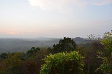El Tintal views